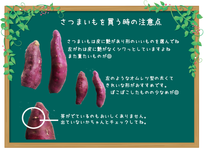さつまいも レンジ 焼き芋 人気