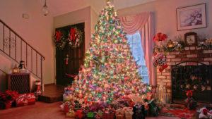 アメリカ クリスマス チキン