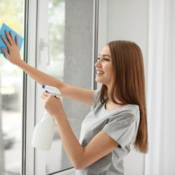 大掃除 窓 簡単